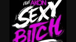 David Guetta feat  Akon   Sexy Bitch HQ LYRICS   YouTube