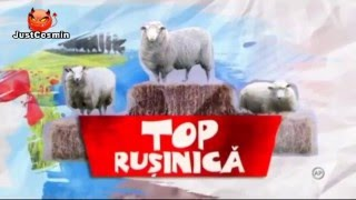 Cronica Carcotasilor 11.05.2016 (Top Rusinica)