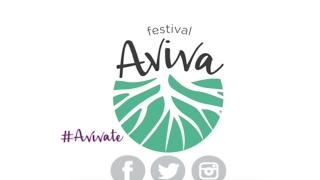 Fiesta 24 Febrero - Festival Aviva