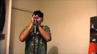 Harmonica Road Test 04: Lee Oskar -v- Golden Melody -v- Manji