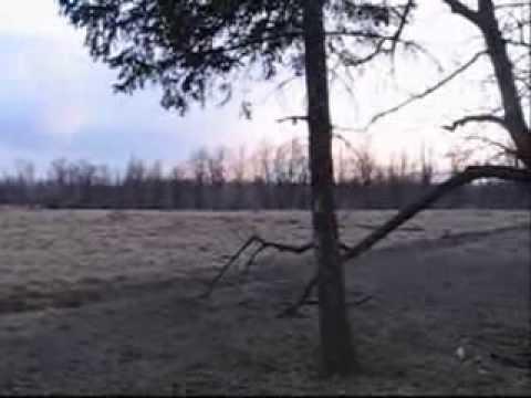 15.03.2010 Hortyca.Roads & trees.Zaporizhzhya,Ukraine.wmv