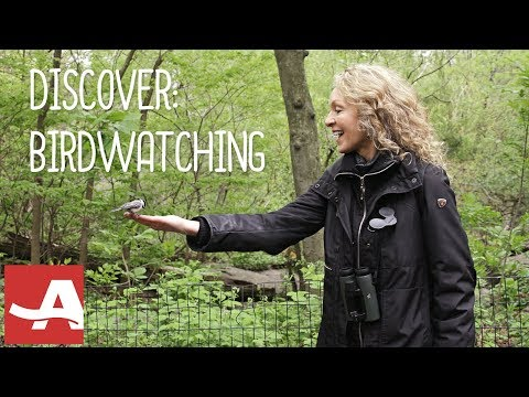 Birdwatching for Beginners with Barbara Hannah Grufferman | AARP