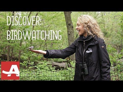 Birdwatching for Beginners with Barbara Hannah Grufferman | AARP