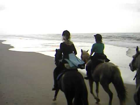 Ride on the beach
