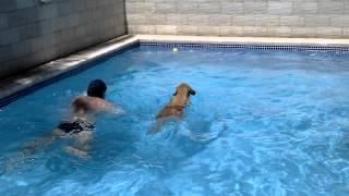 Princesa na piscina com bolinha