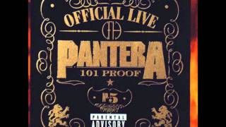 Pantera - Dom, Hollow