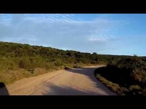 Addo Elephant National Park – South Africa