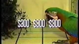 Zac the parrot as the Original Beak O' Matic