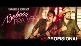 VS PROFISSIONAL - BOBEIA PRA VER - FERNANDO E SOROCABA