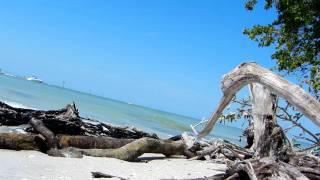 Salt Life Serenity - Wiggins Pass, Naples FL