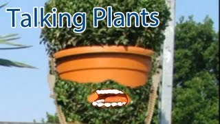 Funny Plants Galore Talking Plants Animation