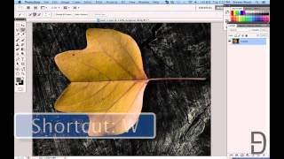 Graphic Design For Beginners Ep. 1   Removing An Object From Its Background In Photoshop CS5