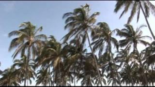 LLORA CORAZON D.R - BRISA MARINA DE SECHURA 2012 - VIDEO CLIP OFICIAL
