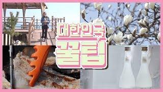 [대한민국 꿀팁] 2020년 4월 21일 다시보기