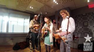 Lindsay Lou & The Flatbellys - The Fix [Live at WAMU's Bluegrass Country]