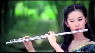 Johann Pachelbel - Canon in D - Flute