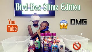 Don't Chose the Wrong Slime Ingredients Bird Box Challenge गलत कीचड़ सामग्री का चयन न करें