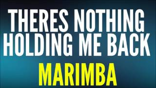 Shawn Mendes - There's Nothing Holdin Me Back (Marimba)