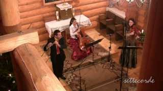 P. Tchaikovsky, Waltz from Sleeping Beauty, viola, cello and flute (Trio Animando)
