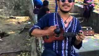 Luz De Día - Enanitos Verdes (Ukelele Cover Live)