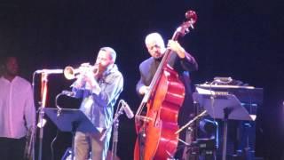 Ornette Coleman Tribute & Avishai Cohen @ Jazz Middelheim Antwerp - 13/08/16