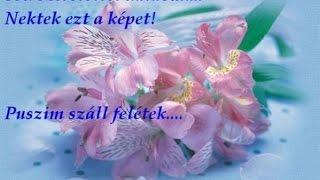 Jó reggelt csodaszép napot kívánok szeretettel!