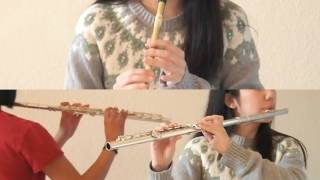 Promontory from The Last of the Mohicans (The Gael) - Flute & Tin Whistle
