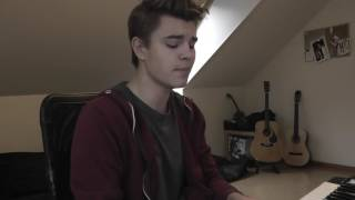 Story Of My Life - One Direction (Cover By Linus Bruhn)