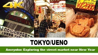 Ameyoko: Exploring the market near New Year #TYO-019