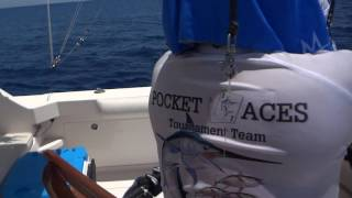 2016 Bisbee's East Cape - Team Pocket Aces - Black Marlin 8/4/2016 12:31pm