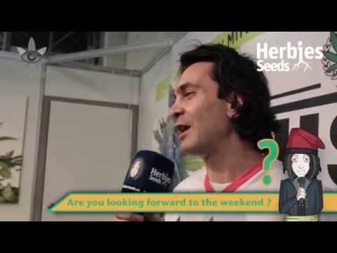 Ministry of Cannabis @ Spannabis 2015 Barcelona