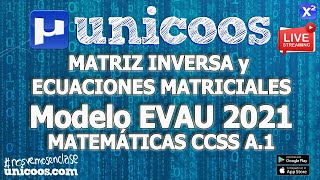 Imagen en miniatura para LIVE!!! Modelo EvAU 2021 - Matemáticas CCSS 08 - Ejercicio A.1 - Matrices