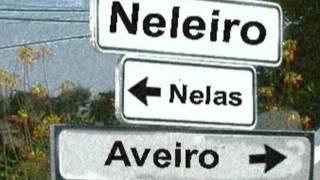 NELEIRO   GANDA MALUCOS   ano 2016