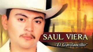 Saul Viera - Chaparrita De Mis Amores