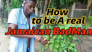 How to be a real Jamaican BadMan [ Fry Irish Comedy ]