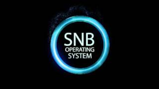 The Ring Effects - SNB OS