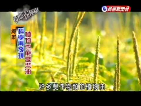 植物變柴油  生質能源夯-民視新聞 - YouTube
