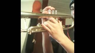 Todo El Mundo Necesita Un Beso en trompeta
