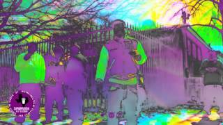 Lil Phat - Go Through Mo Shit (Official Chopped Video)
