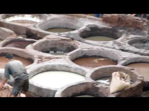 Fez Tannery 2