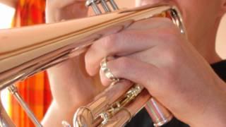 Nu-Jazz/Chillout/Lounge - Gavrossa - Café d'Anvers - Trumpet Version