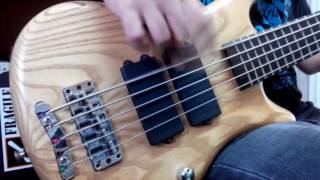 System of a Down - Suite-Pee (Bass Cover)