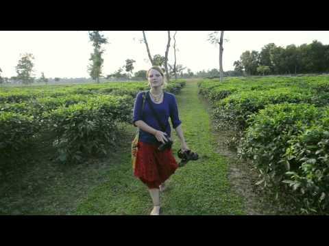BANGLADESH Épisode 3 Sur la route des champs de thé
