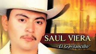 Saul Viera- Madrecita Querida