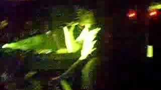 Dancepig Singing 'Beneath Me'