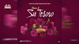 Shane E - Su Tesoro (Official Audio) December 2018