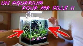 AQUARIUM NANO POUR FILLE [AQUASCAPING & BETTA SPLENDENS] Aquariophilie by Aqua zen