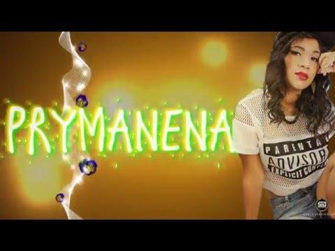 Te Quiero Amar de Prymanena Letra y Video