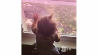 Higher - Jauz x Netsky - Triller