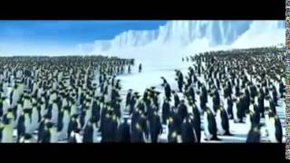 chant des pingouin